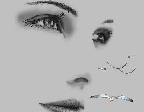 https://i.pinimg.com/736x/9c/87/42/9c8742968d0c7384967f927d8eda0ec6--best-gif-animated-gif.jpg