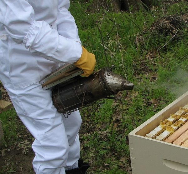 How to Light a Bee Smoker - Mama's Homestead http://www.mamashomestead.com/light-bee-smoker/