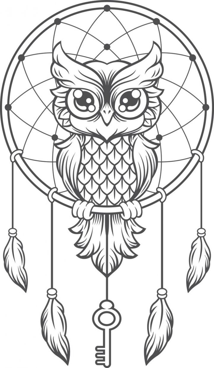 Image Result For Ed Hardy Baby Faced Owl Owl Coloring Pages Black And White Owl Owl Dream Catcher