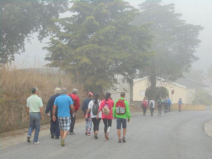 LamaLentos - Alcanena - Caminhada com património: o património industrial e técnico de Alcanena - 1 / 42
