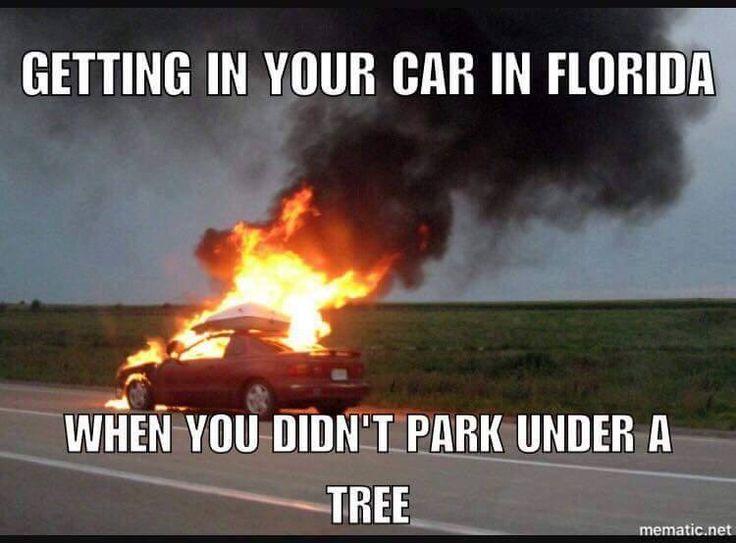 Florida problems