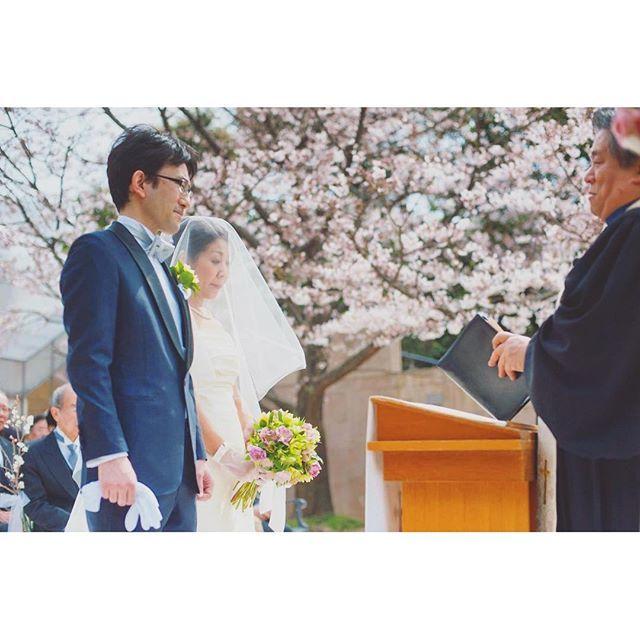 【q.e.d.club】さんのInstagramをピンしています。 《満開のソメイヨシノ…♪春婚だけの特別な瞬間です♡ #キューイーディークラブ#ガーデン挙式#桜#ソメイヨシノ  #レストランウェディング#ガーデンウェディング #邸宅ウェディング#ナチュラルウェディング#春婚 #隠れ家レストラン#大人婚#プレ花嫁#婚約中#結婚式準備 #ウェディングドレス#ガーデン挙式#サプライズプロポーズ #ウェディングフォト#ブライダルフェア#式場見学#式場迷子 #weddingphotography#weddingceremony #weddingdress#weddingbouquet#weddingparty #weddingcake#springwedding#cherryblossom》