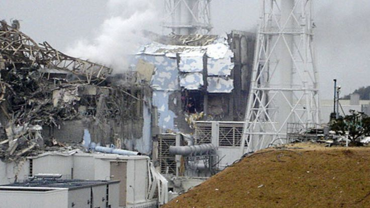 Effects of the Chernobyl disaster