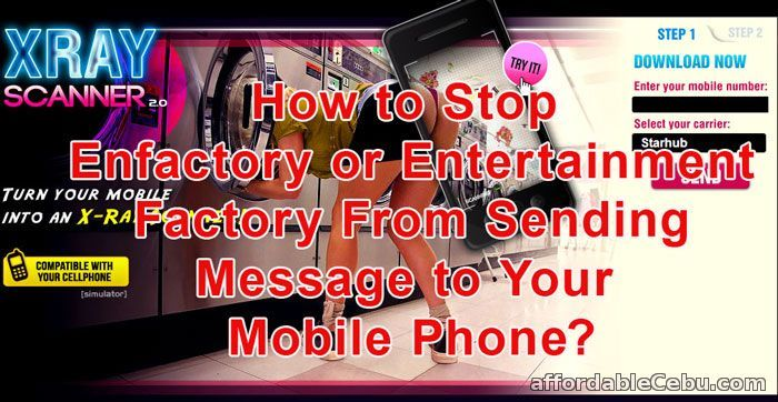 """Are you surprise with the """"nakaw-load"""" or load deductions on your mobile phone? That might be from Enfactory services. How to unsubscribe from Enfactory and avoid the load deductions? read this... http://www.affordablecebu.com/load/banking/how_to_stop_enfactory_or_entertainment_factory_from_sending_message_to_your_mobile_phone/13-1-0-29626"""