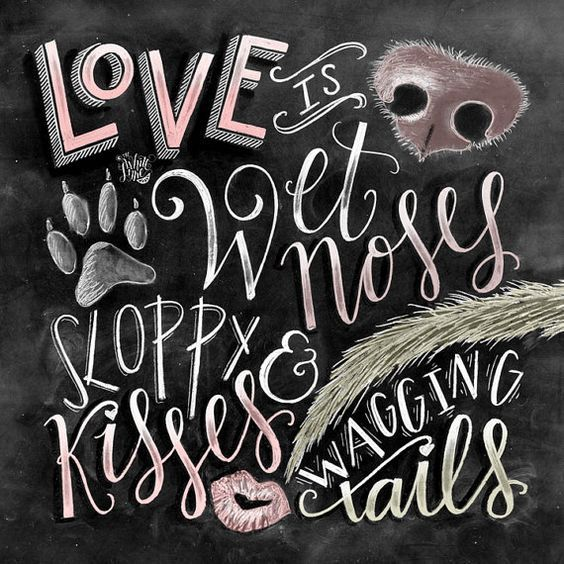 Love is wet noses, sloppy kisses, and wagging tails. <3