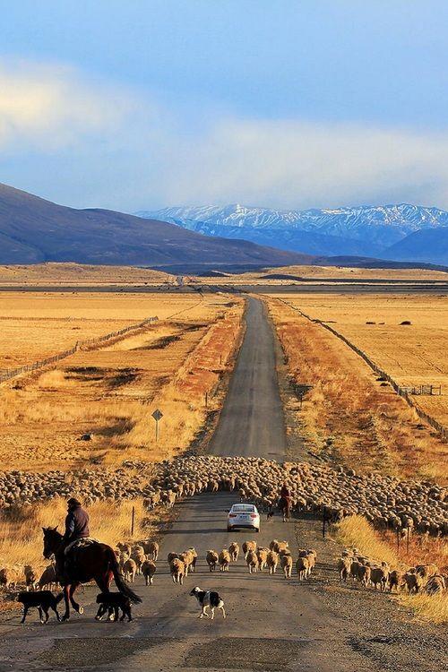 Cerro Castillo, Chile .Itamar Campos ❤ Reiseausrüstung mit Charakter gibt's auf vamadu.de