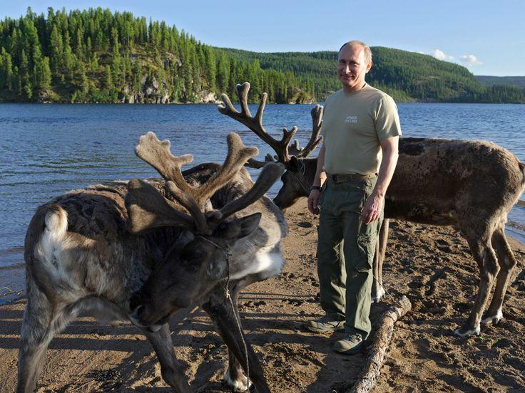 AP Photo/RIA-Novosti, Alexei Nikolsky, Presidential Press ServiceIn this photo taken on Saturday, July 20, 2013, Russian President Vladimir Putin pats deer during a mini-break in the Siberian Tyva region, Russia. - See more at: http://www.bullfax.com/?q=node-vladimir-putin-flees-controversy-goes-shirtless-fishing#sthash.kfP411bF.dpuf