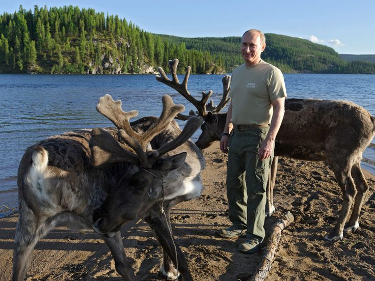 AP Photo/RIA-Novosti, Alexei Nikolsky, Presidential Press ServiceIn this photo taken on Saturday, July 20, 2013, Russian President Vladimir Putin pats deer during a mini-break in the Siberian Tyva region, Russia. - See more at: http://www.bullfax.com/?q=node-vladimir-putin-flees-controversy-goes-shirtless-fishing#sthash.kfP411bF.dpuf