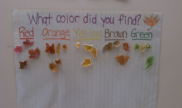 We can go on a nature walk to pick leaves and other natural things to do our colour match.  This is good for word recognition, sorting and learning about changes in the environment