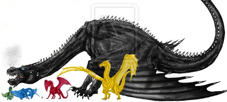 See the dragons of the Inheritance Cycle side-by-side to scale for the first time!