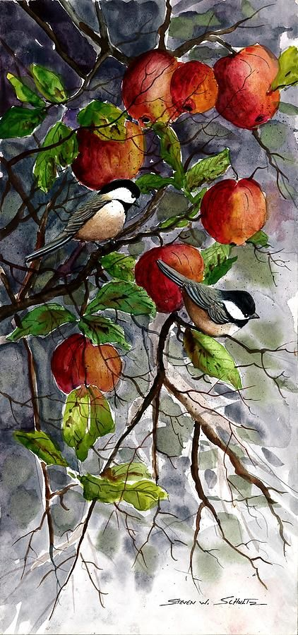 Chickadees In Apples Painting  Steven W Schultz