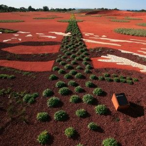 The Australian Garden by landscape studio Taylor Cullity Lethlean and plant expert Paul Thompson won the award for best landscape project at WAF 2013.