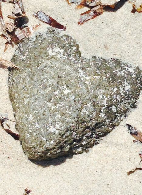 Love, Bunker Bay, WA