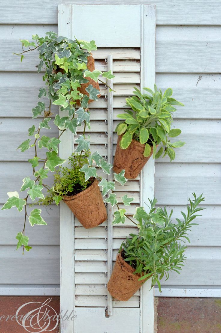 Herb Garden - Create and Babble