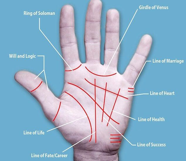 Palmistry is the art of exemplifying or predicting the future through palm reading. There are certainly many techniques and variations when it comes to inferring the meaning of palm lines, you can start off by getting acquainted with palm reading by studying four major palm lines -> head line, the heart line, the life line,