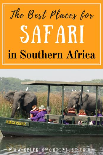 The Best Places for Safari in Southern Africa