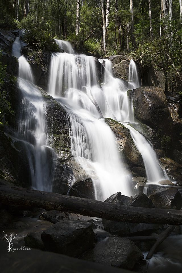Tooronga Falls is approx 100km east of Melbourne. The track to the falls is 750m each way from the carpark or you can continue on to Amphitheatre falls.
