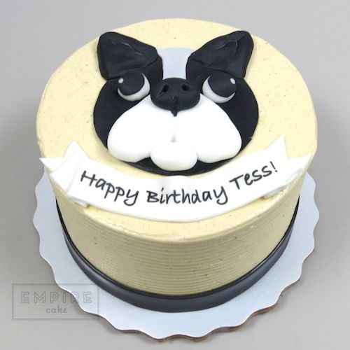 Best 25 Bulldog Cake Ideas On Pinterest Georgia