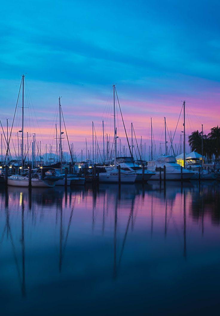 The marina in Coconut Grove, Florida