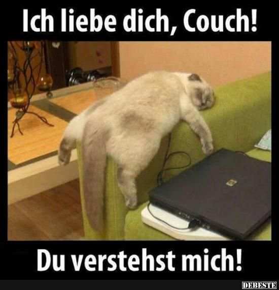 I love you, couch! | Funny pictures, sayings, jokes, really funny