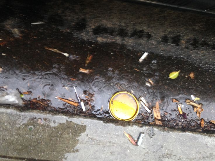 Butts in the rain, heading to the Bay. Outside Jaxons Bar Fillmore St, San Francisco