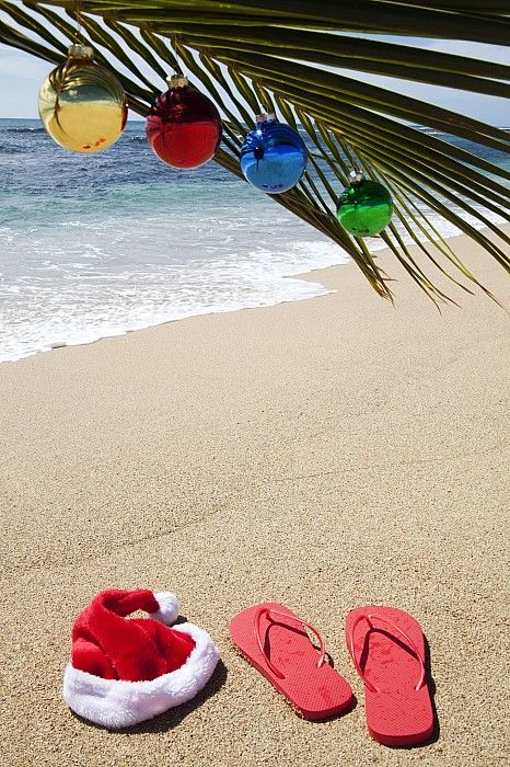 Hawaiian Christmas by Brandon Tabiolo with Pin-It-Button on FineArtAmerica