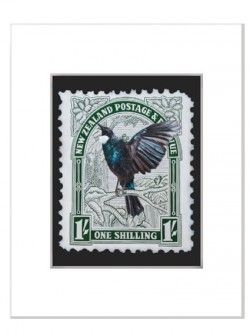 Tui Stamp – Matted Print | Design Withdrawals