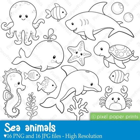 animalitos del mar. Dibujos