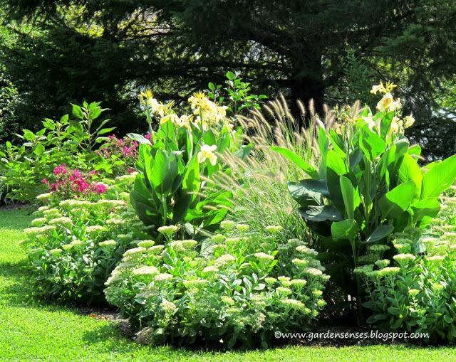 305 best images about beautiful gardens and plant combinations on pinterest