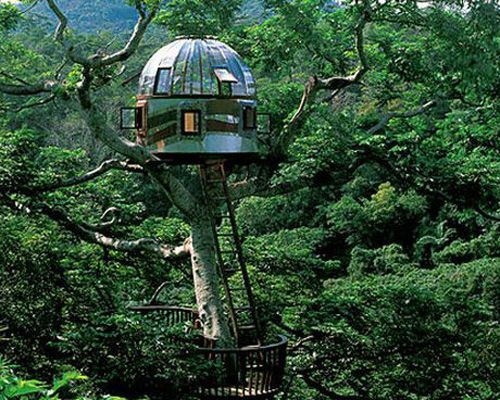 """Beach Rock Tree House  Kobayashi Takashi built this breathtaking treehouse in 2005 with the purpose of communicating with outer space. Perched in the treetops of Okinawa this """"plexiglass portal to the universe"""" is a popular attraction at Japan's rustic Beach Rock Resort."""