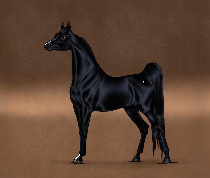 Black Arabian Horse Art   www.pixshark.com - Images ...
