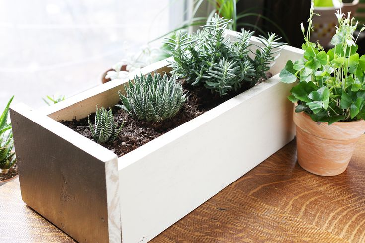 How To Prepare A Wooden Planter, How To Prepare Outdoor Planters