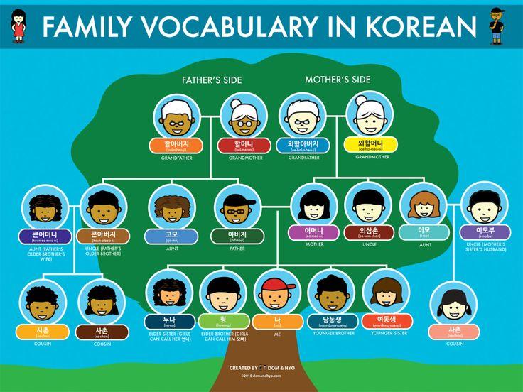 Family vocabulary in korean korean lessons korean
