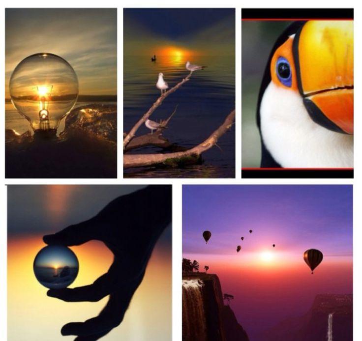 Montages multi-photos