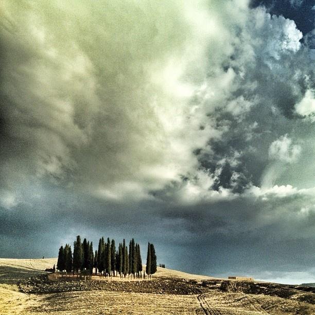 Guidando nella mia Toscana Toscana [ Original pic @miciomacho ] #tuscanygram