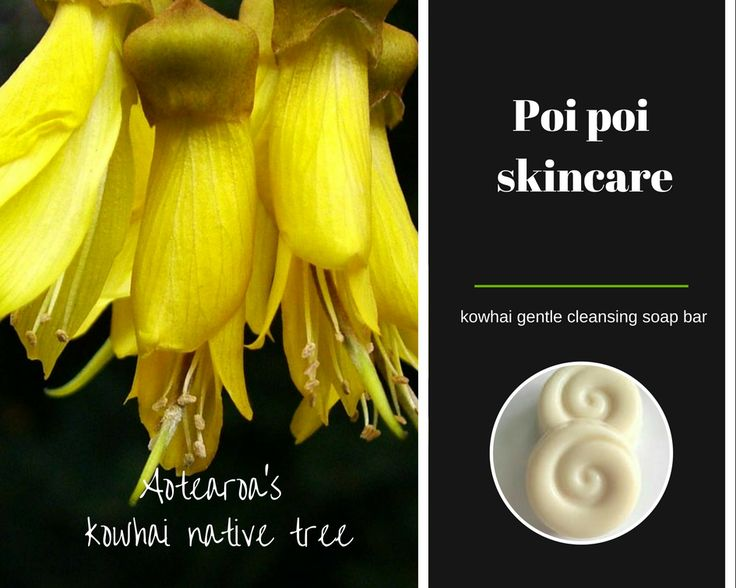 Our skincare products, formulated to assist oily skin, will help cleanse, balance and regulate oil production without stripping the skin's natural protective barrier. Kowhai native tree has been used in traditional Maori medicine for their medicinal and skin enhancing properties.