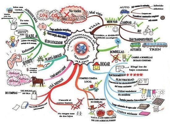 Mapa mental medio ambiente