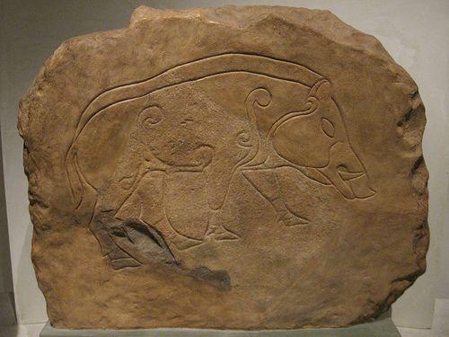 Pictish boar - National Museum of Scotland, Edinburgh.