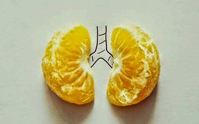 ΥΓΕΙΑ ΚΑΙ ΕΥΕΞΙΑ  ΓΙΑ ΚΑΛΥΤΕΡΗ ΦΥΣΙΚΗ ΚΑΤΑΣΤΑΣΗ.: Μανταρίνι - το μοναδικό φρούτο που αποβάλλει από τ...