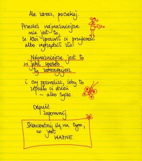 Żółte kartki – Strona 2 – Beata Pawlikowska