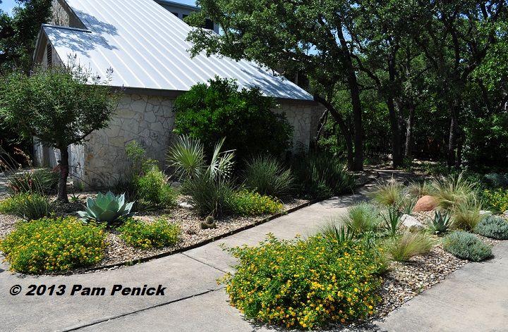 Shirley Fox S Golden Xeriscape Garden In San Antonio Is