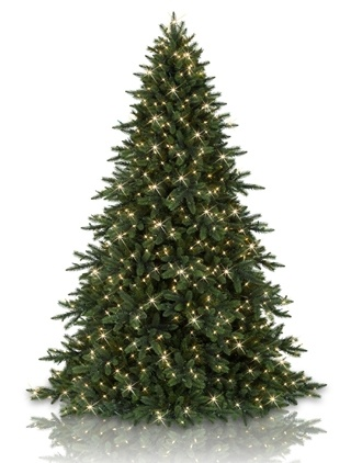 My source for realistic Christmas trees, wreaths and garland - Balsam Hill Christmas Tree Co.