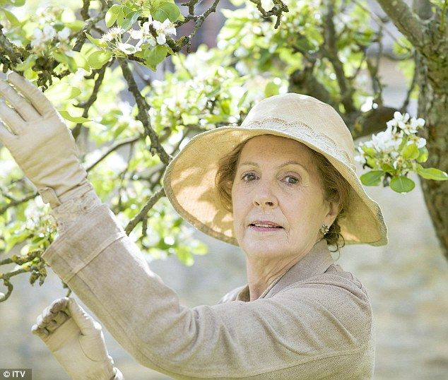 Screen star: Penelope Wilton as Isobel Crawley in the fifth series of the hit show Downton Abbey.