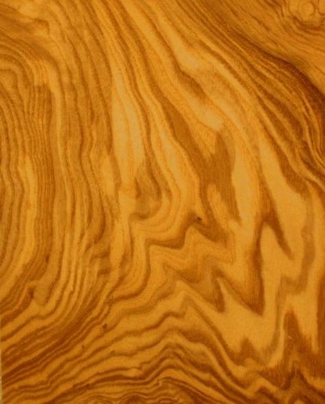 Olive Ash - Burl    www.modernmillworkinnovations.com