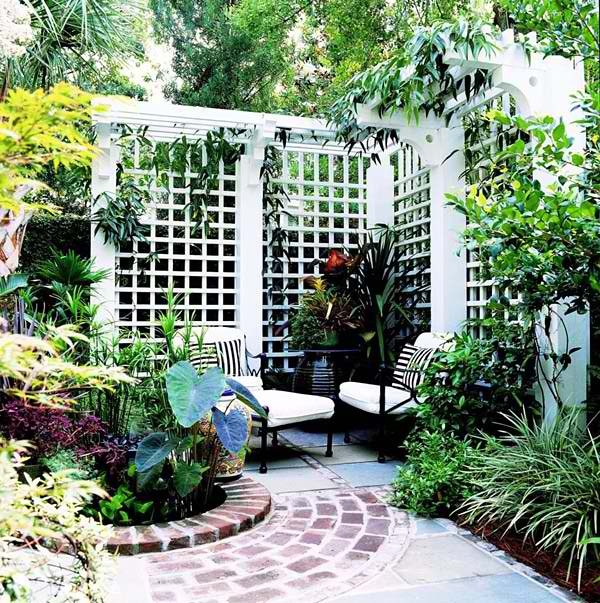 17 best images about garden dividers trellises on for Trellis ideas for privacy