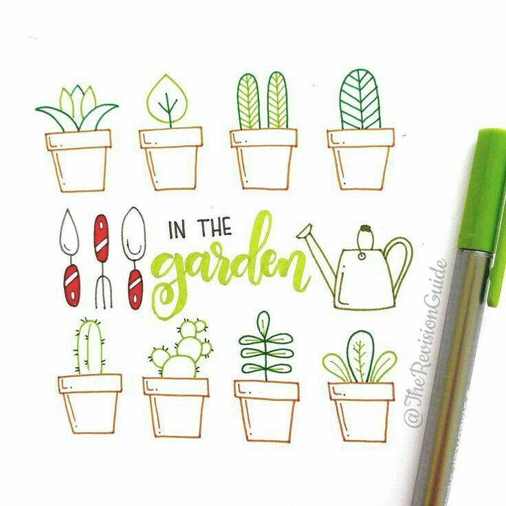 Drawing potplants.