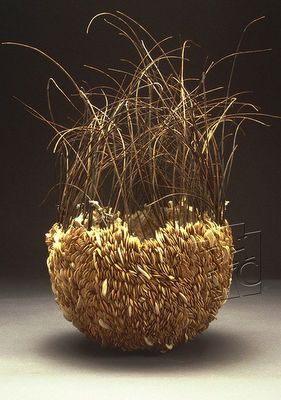 Carrie Nordlund | Contemporary basket ~ Untitled Seed Series