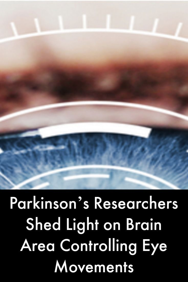 the study of eye movements psychology essay Dr rayner's study of eye movements during reading is an important cornerstone  of  i've done a few things with kids and i wrote a paper that was in psychology.
