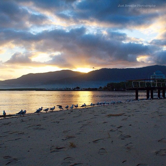 Cairns Esplanade in the early morning