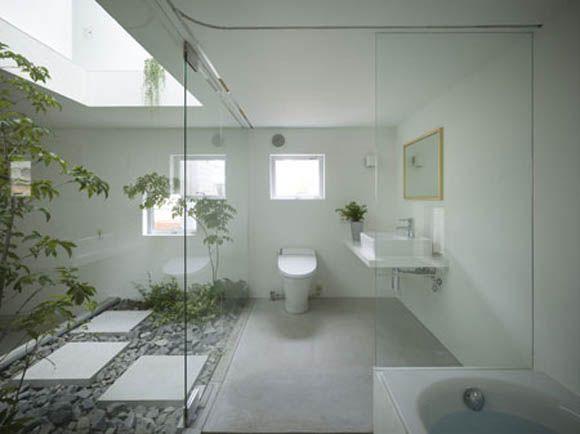 Jardín en baño + Iluminación + Transparencias